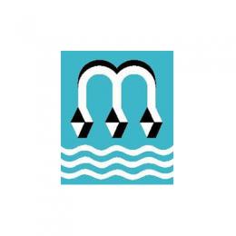 Groepslogo van Stichting Maasveren
